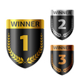 winners shield vector image