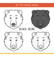 Black bear Set isolated face heads bear in color vector image