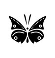 butterfly icon black sign on vector image