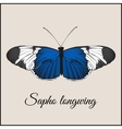 Vintage card with butterfly vector image