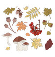 autumn treasure fall season nature vector image
