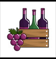 bottles wine and grape icon vector image vector image