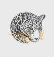 leopard head mascot vector image vector image