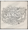 Mexico hand lettering and doodles elements vector image vector image