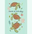 postcard with cute sea turtles graphics vector image