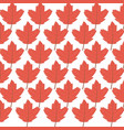 Background maple leaves branches decoration autumn