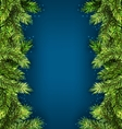 Natural Framework with Fir Twigs Copy Space for vector image vector image