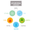 vata pitta and kapha doshas - ayurveda vector image vector image