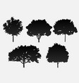 a set of 5 trees in black on a gray backgro vector image vector image