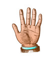 color male hand make gesture five fingers up vector image