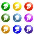 fresh broccoli icons set vector image