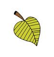 hand drawn leaf vector image