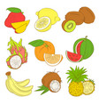 outline hand drawn colorfull fruit set flat style vector image vector image