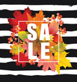 colorful sale card or banner with autumn leaves vector image vector image