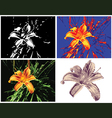 Multipurpose lily render vector image vector image