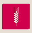 wheat sign spike spica vector image vector image