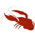 boiled red crayfish crawfish vector image vector image