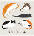 cats sleep collection vector image vector image