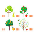 fruit trees apple pear orange flowering tree vector image vector image