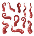 octopus tentacles on white background sea squid vector image vector image