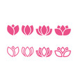 pink lotus icon design template isolated vector image vector image