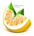pomelo slice with green leaves vector image vector image