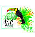 summer sale composition with toucan flowers and vector image