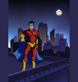 superhero on roof building vector image vector image