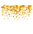 falling from top a lot coins vector image vector image