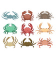 flat set of colorful crabs marine animals vector image