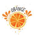 hand draw orange slice of vector image