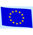 Flag of EU vector image
