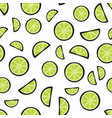 slices fresh lime on white background pattern vector image
