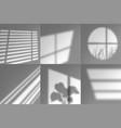window shadows natural long shades sunrise vector image vector image