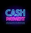 business sign cash payment neon alphabet vector image