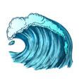 color rushing foamy tropical ocean marine wave vector image vector image
