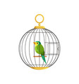 colorful little bird in cage vector image vector image