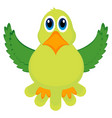 isolated cute parrot vector image vector image