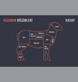 meat cuts poster butcher diagram and scheme - vector image vector image