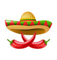 mexican chili pepper vector image vector image