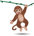 monkey hanging on a branch vector image vector image