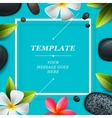 Spa concept background vector image