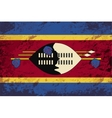 Swaziland flag Grunge background vector image vector image