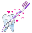 tooth love vector image vector image
