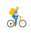 bicycle courier vector image vector image