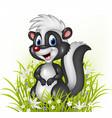 Cartoon skunk on grass background vector image vector image