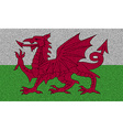 Flags Wales on denim texture vector image