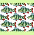 bass fish seamless pattern vector image vector image