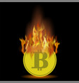 burning gold bitcoin icon on black background vector image
