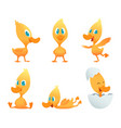 cartoon duck various action poses funny duck vector image vector image